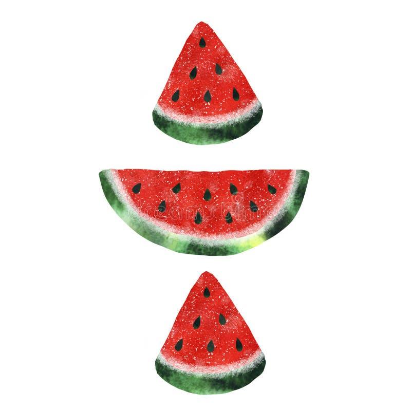 Illustratie met waterverfwatermeloen royalty-vrije stock afbeelding