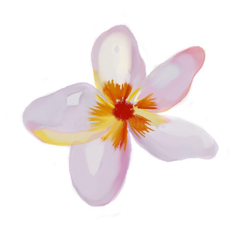 Illustratie tropische botanische reeks stock illustratie