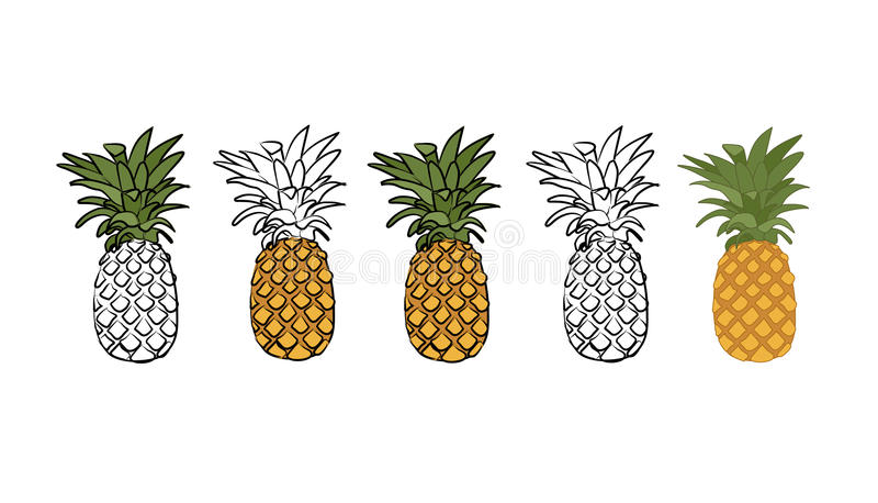 Illustratie van ananas royalty-vrije stock fotografie