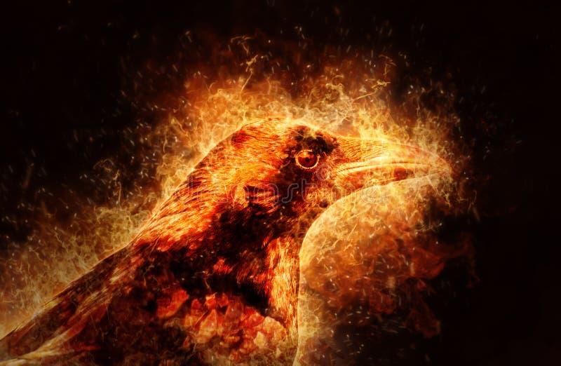 Illustratie van brand het branden kraai met zwarte achtergrond vector illustratie
