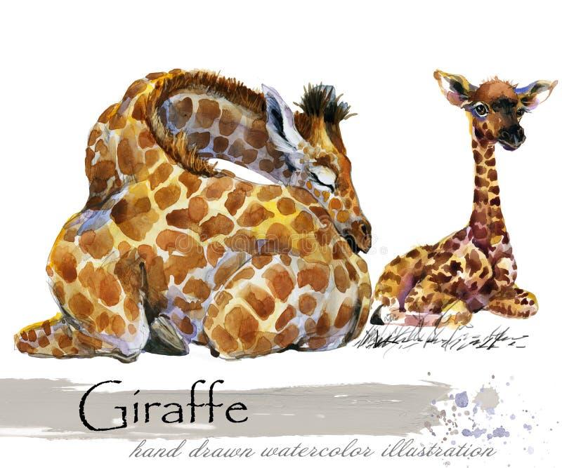 Illustratie van de giraf de hand getrokken waterverf royalty-vrije illustratie