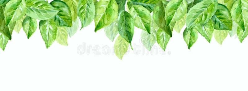 illustratie van de lentebladeren Waterverfsamenstelling Horizontale background stock illustratie