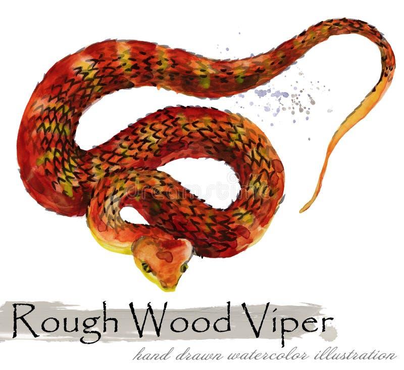 Illustratie van de slang de hand getrokken waterverf Ruwe Houten Virer royalty-vrije illustratie