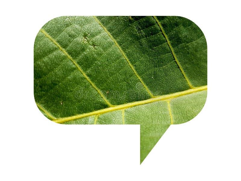 Illustratie van de de toespraakbel van het Eco de natuurlijke blad organische groene die op wit wordt geïsoleerd stock foto's