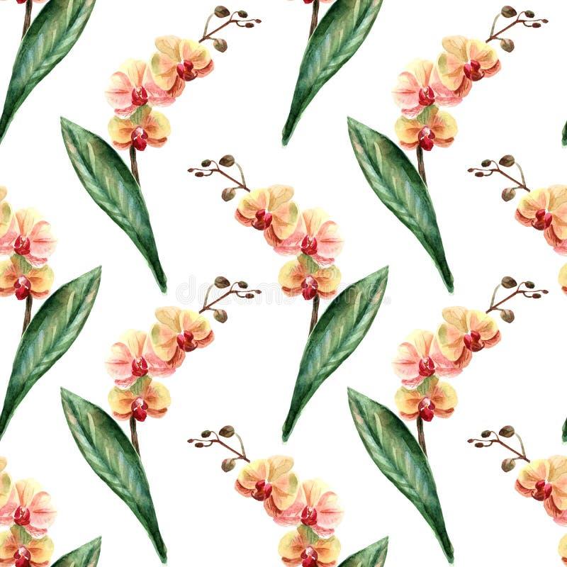 Illustratie van de waterverf de heldere zomer met tropische bloemen royalty-vrije illustratie