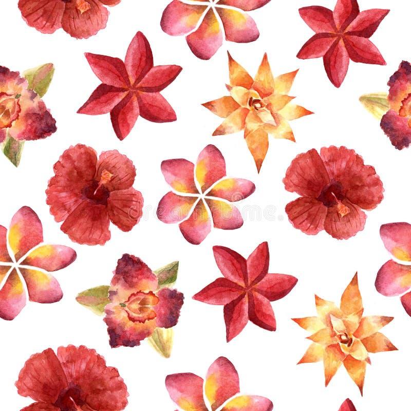 Illustratie van de waterverf de heldere zomer met tropische bloemen vector illustratie
