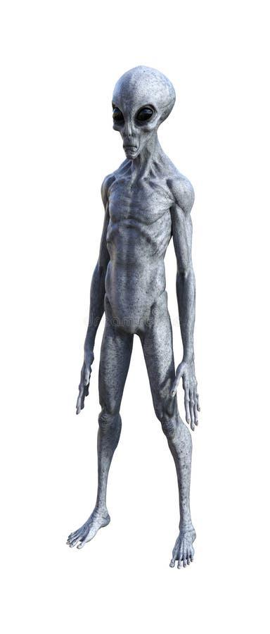 Illustratie van een grijze vreemdeling die op een witte achtergrond zijn royalty-vrije stock afbeelding