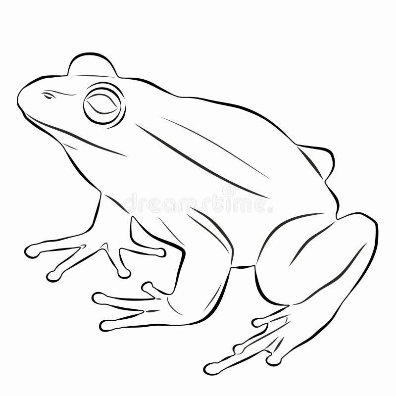 Illustratie van een kikker, vectortekening royalty-vrije stock afbeelding