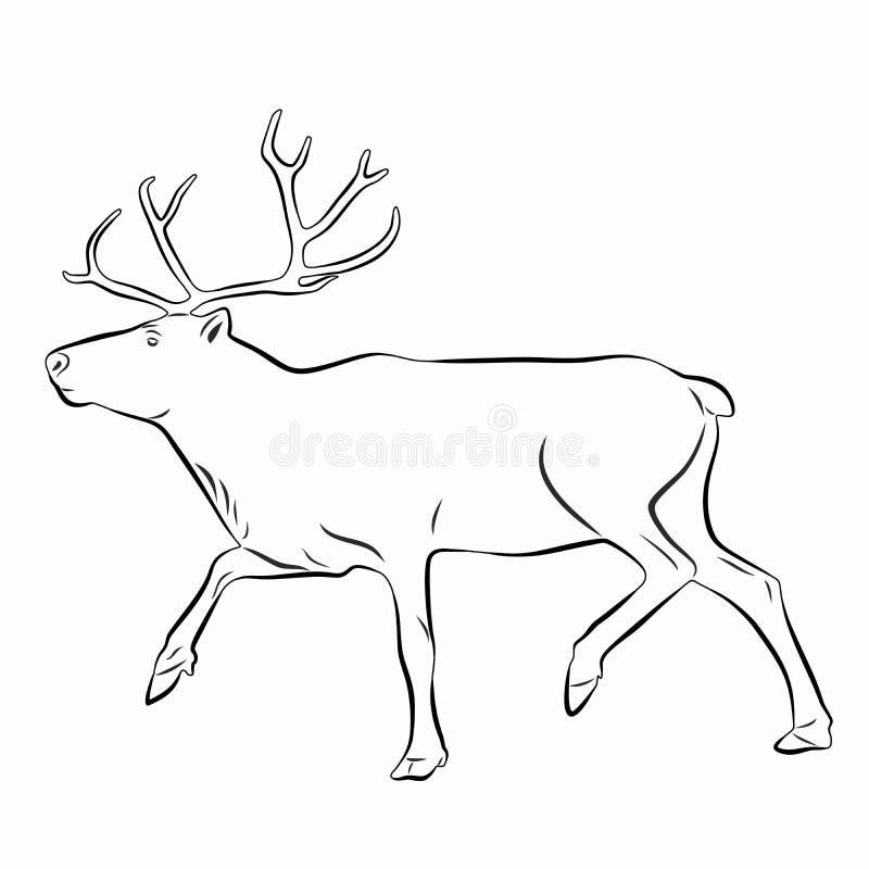 Illustratie van een rendier, vectortekening stock afbeelding