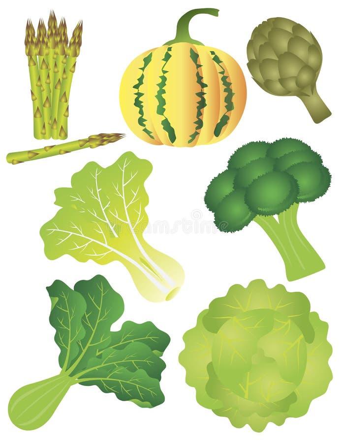 Illustratie van groenten isoleerde Witte Achtergrond stock illustratie