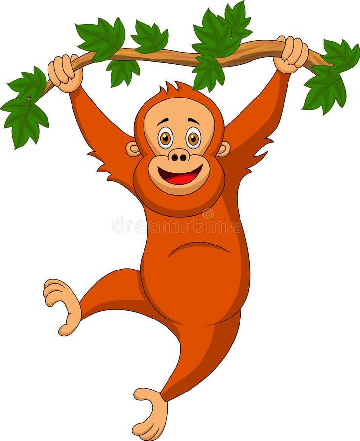Het leuke orangoetanbeeldverhaal hangen op een boomtak stock illustratie
