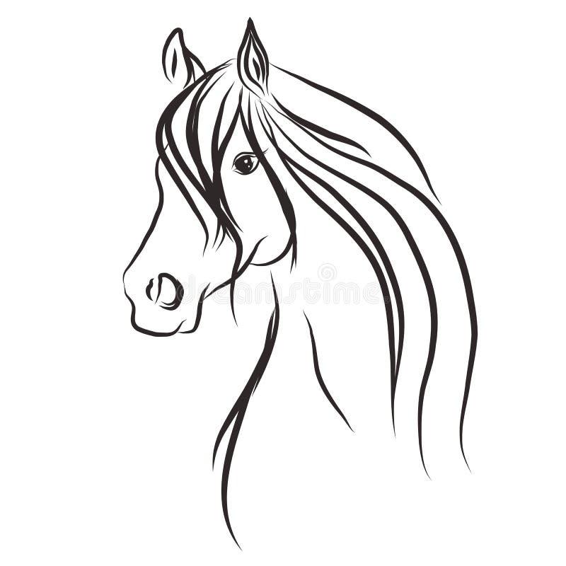 Illustratie van het paard wild stock illustratie