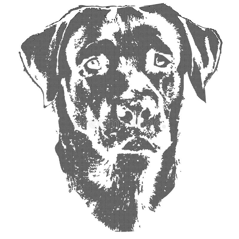 Illustratie van hond, labrador retriever stock illustratie