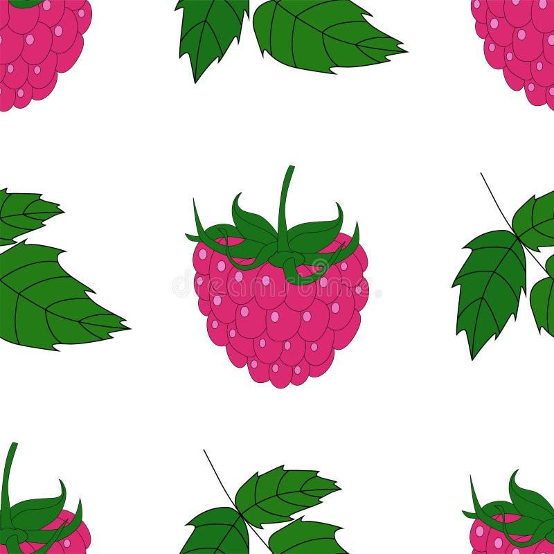 Illustratie van patroon met framboos vector illustratie
