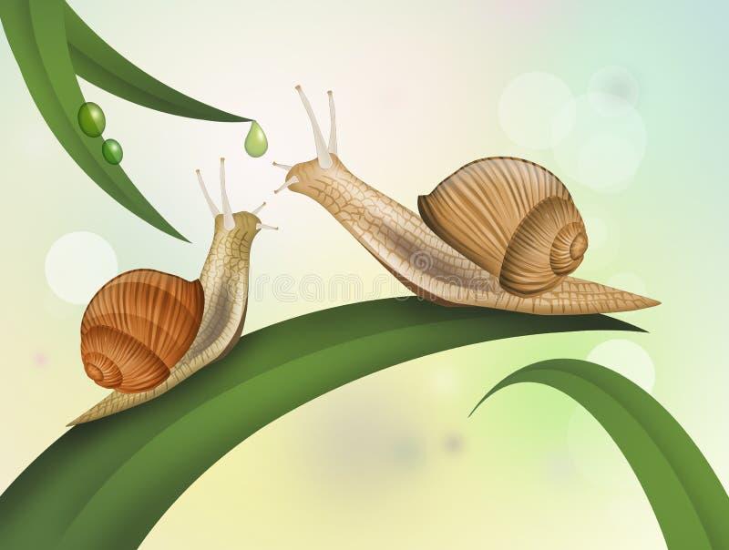 Illustratie van slakken royalty-vrije illustratie