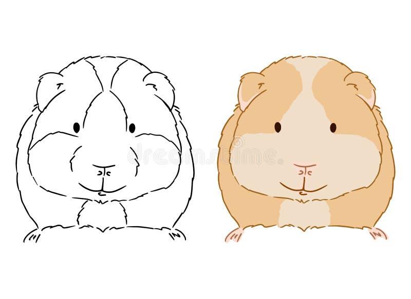 Illustratie van weinig leuk proefkonijn op witte achtergrond Hand getrokken vectorkunst van klein cavy goed voor kleuring voor ki vector illustratie