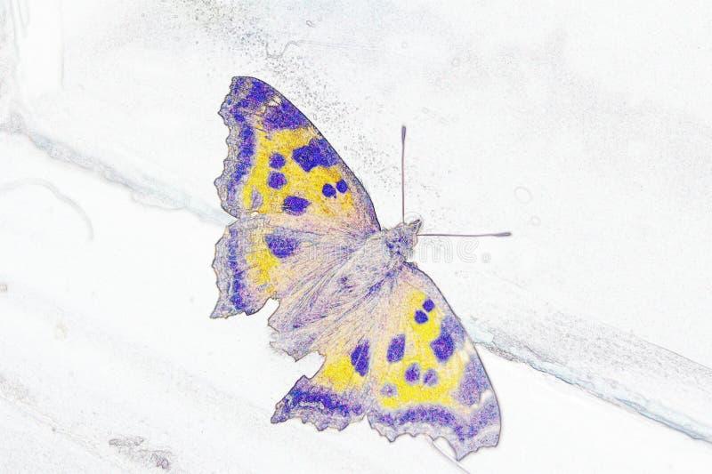 Illustratiepotlood: vlinder dichtbij het venster royalty-vrije stock fotografie