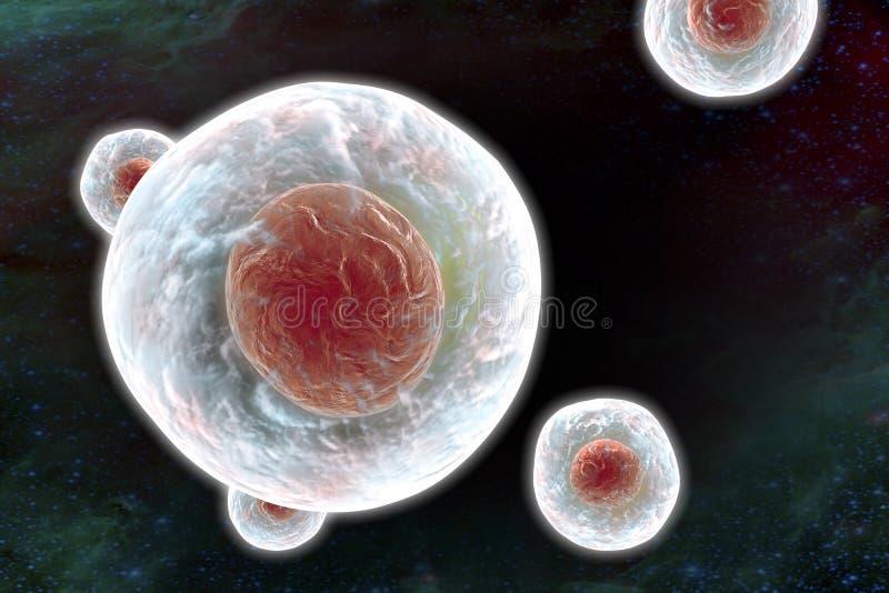 Illustratiion van menselijke cellen royalty-vrije illustratie