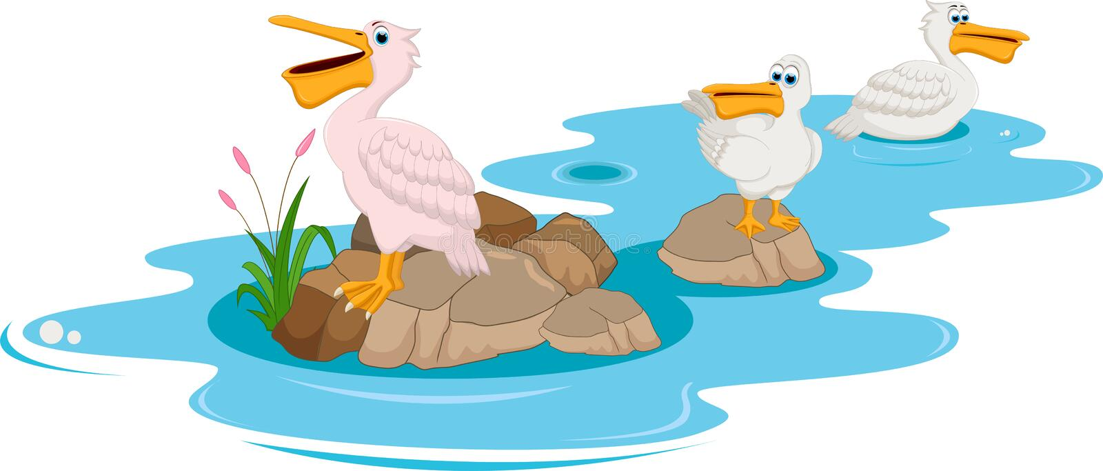 Cute Pelicans cartoon in the Rock River stock illustration