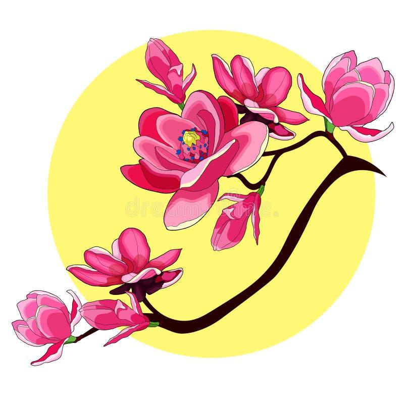 Illustratio decorativo del vector del jardín rojo de la flor de la magnolia de la rama stock de ilustración