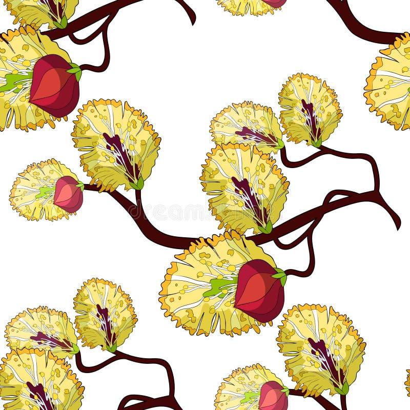 Illustratio sans couture de vecteur de ressort de fleur de branche de saule de modèle illustration de vecteur