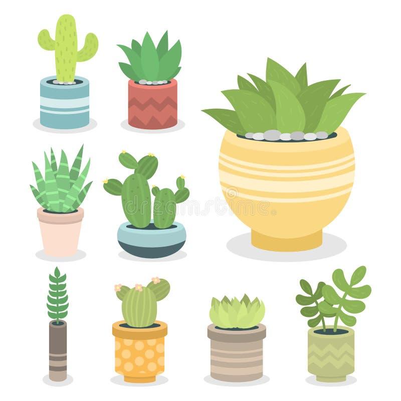 Illustration à la maison cactiforme de cactus de nature de plante verte de cactus d'arbre avec la fleur illustration libre de droits