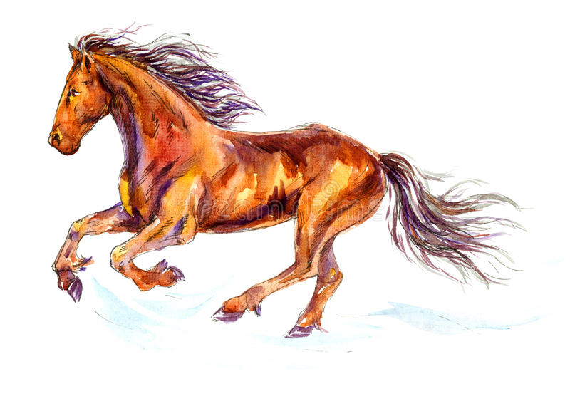 Illustration «horsegalopant rapide» d'aquarelle illustration de vecteur