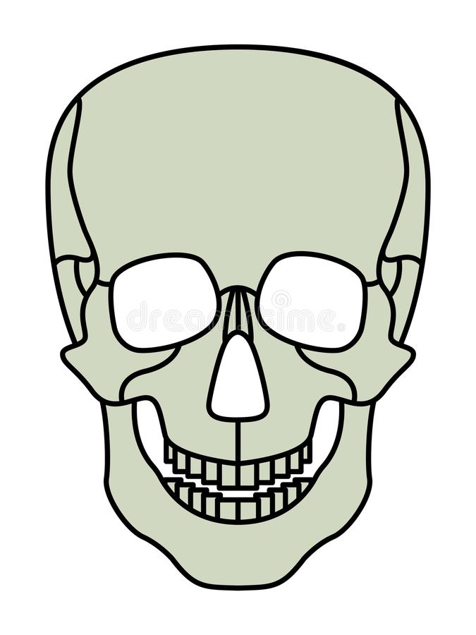 Cartoon skul icon. Illustration of the abstract cartoon skull icon royalty free illustration