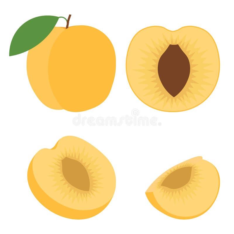 Illustration abstraite d'icône de vecteur de logo pour l'abricot orange de fruit mûr entier, coupe découpée en tranches Modèle d' illustration stock