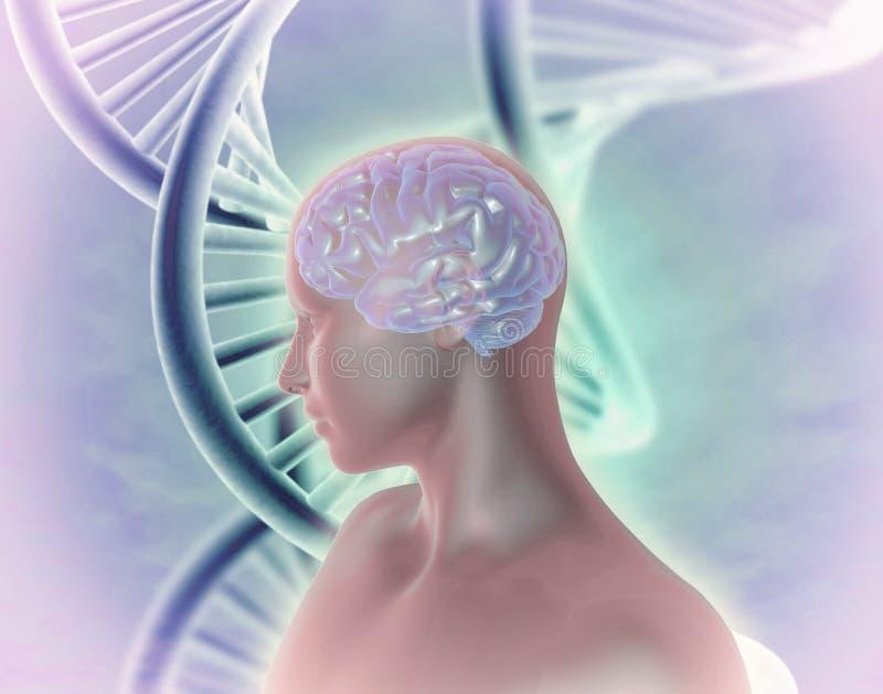 Illustration abstraite de modifications génétiques humaines d'ADN illustration libre de droits