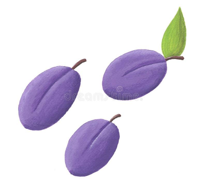 Illustration acrylique de trois prunes illustration de vecteur