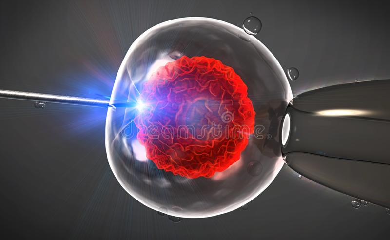 Illustration of an artificial insemination or in-vitro fertilization of an egg cell,ovum or zygote stock illustration