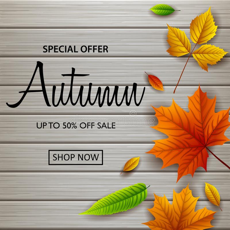 Autumn sale banner with fall leaves on wooden background. Illustration of Autumn sale banner with fall leaves on wooden background royalty free illustration