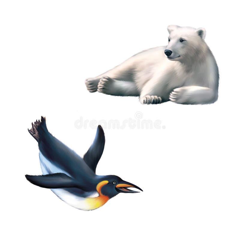 Illustration av att vila isbjörnen, konungpingvin stock illustrationer