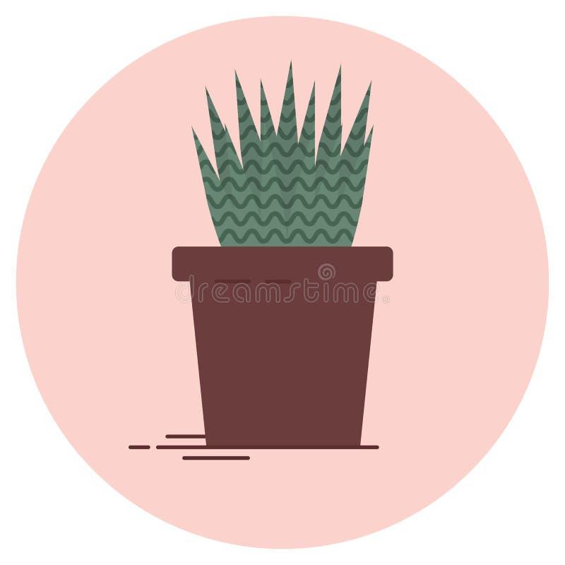 Illustration av den aloevera växten på en rosa bakgrund stock illustrationer