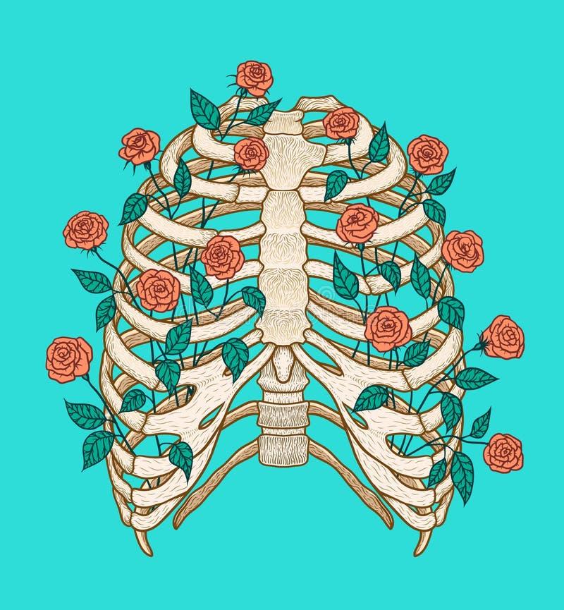 Illustration av den mänskliga stödburen med rosor Linje konststil Boho vektor royaltyfri illustrationer