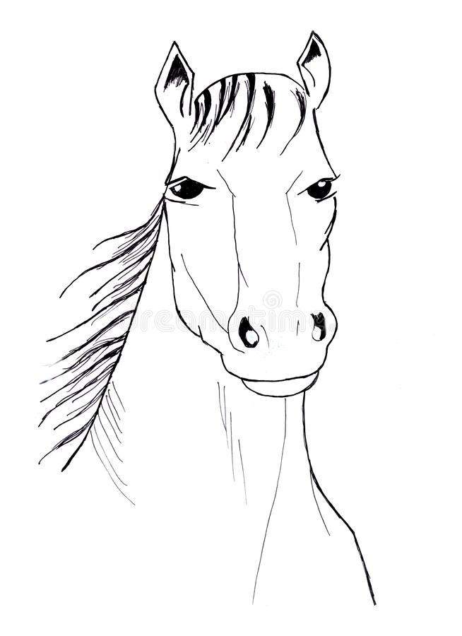 Illustration av den svartvita hästen royaltyfri illustrationer