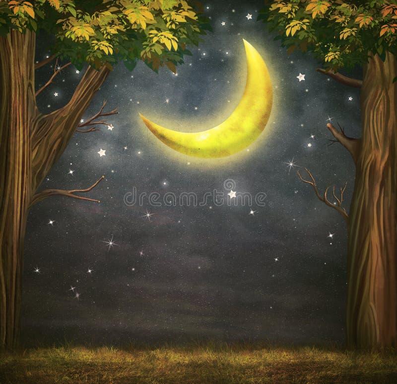 Illustration av en skog och en fantastisk måne royaltyfri illustrationer