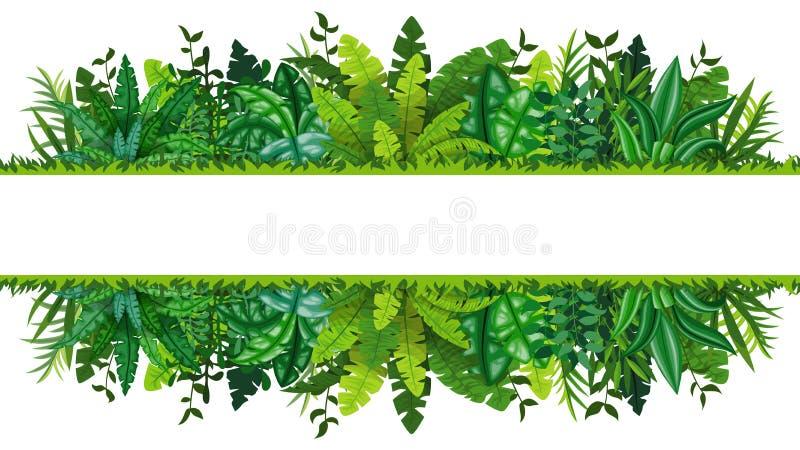 Illustration av ett tropiskt rainforestbaner stock illustrationer