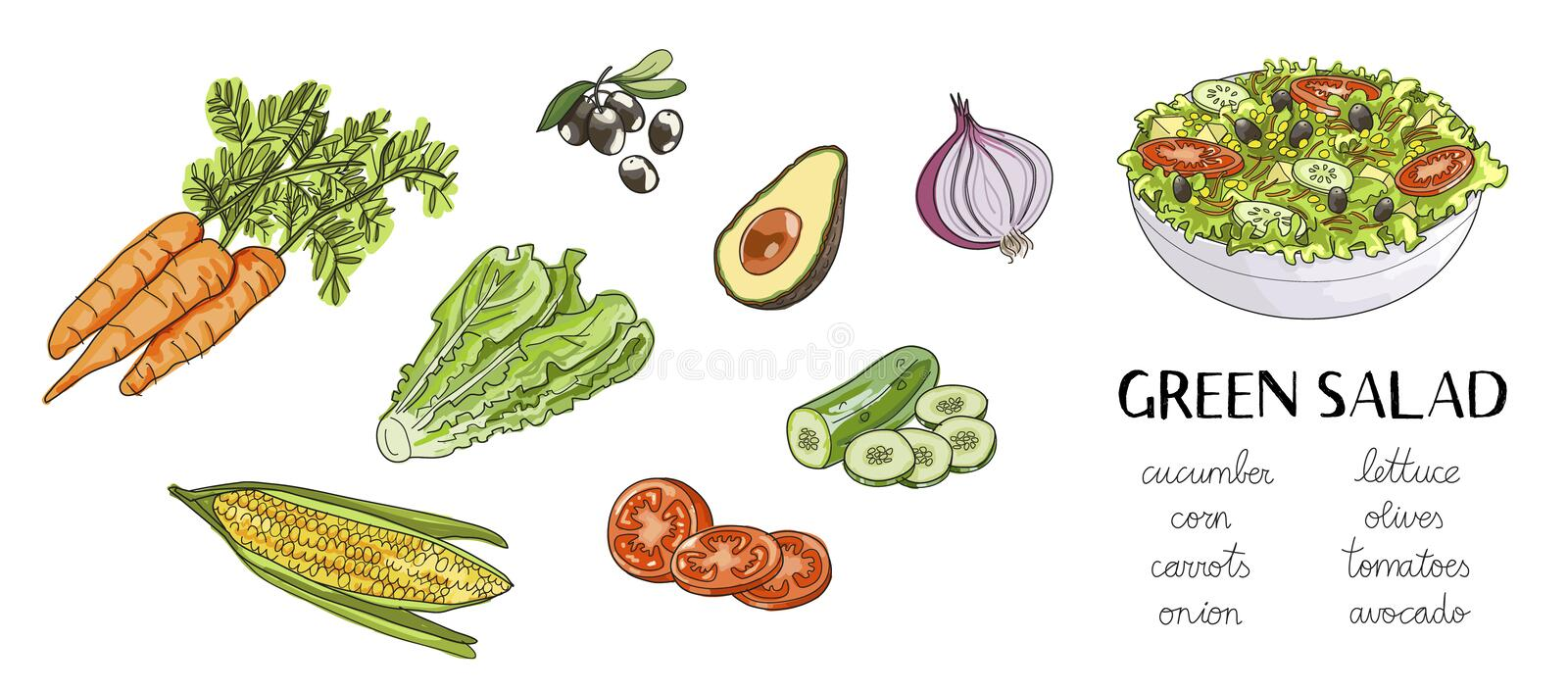 Illustration av hand drog ingredienser för grön sallad: stock illustrationer