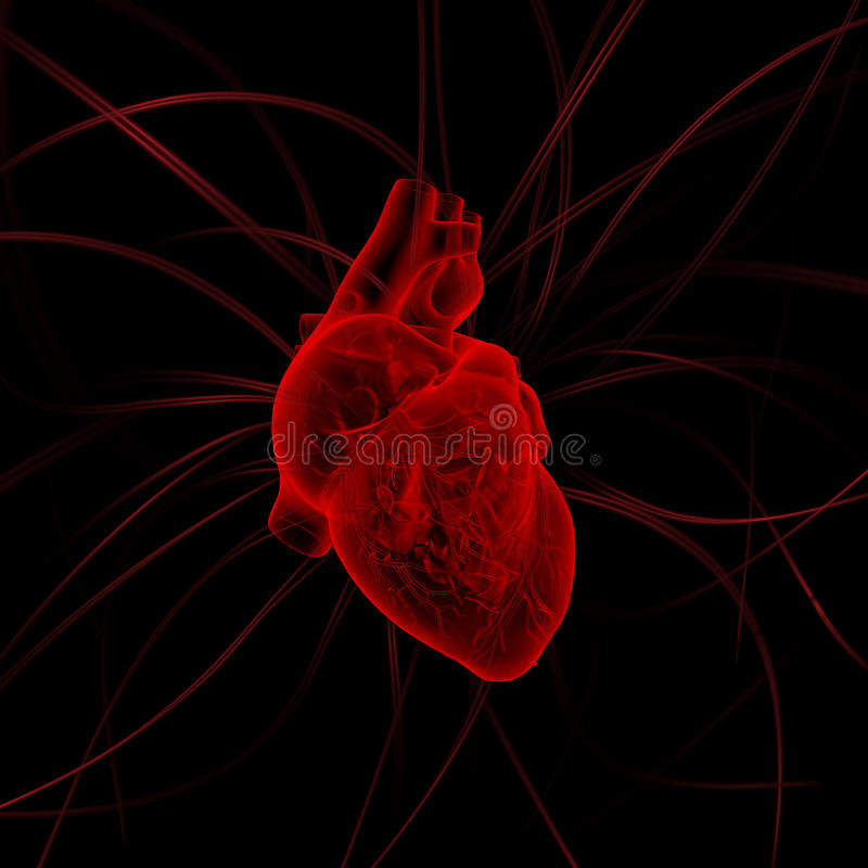 Illustration av hjärta med impulser arkivfoton
