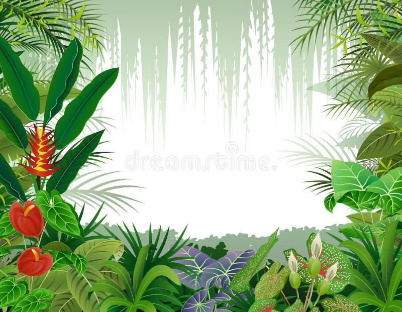 Illustration av tropisk skogbakgrund royaltyfri illustrationer