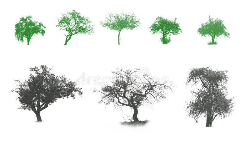 Illustration avec des arbres image stock