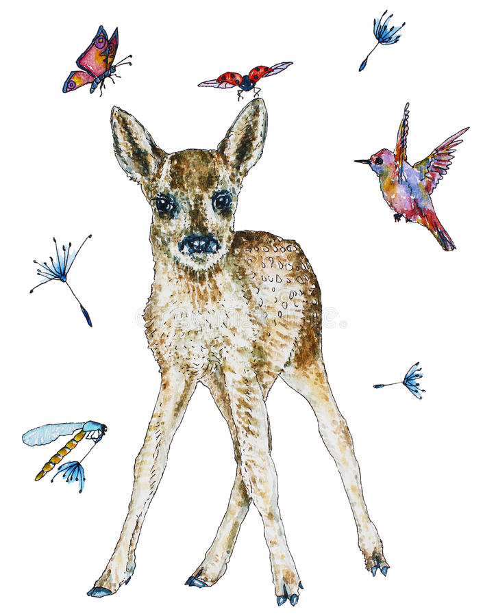 Illustration of baby roe deer in watercolor royalty free illustration