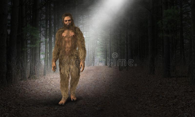 Bigfoot, Sasquatch, Caveman, Cave Man. Illustration of Bigfoot, Sasquatch, a caveman or cave man. The hairy Neanderthal is walking through an ancient forest or vector illustration