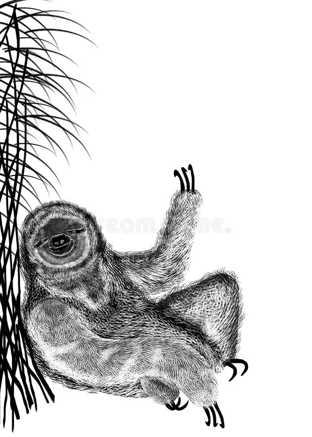 Illustration of black textured silhouette of sloth, that sits under bush reed. Isolated on white background. vector illustration