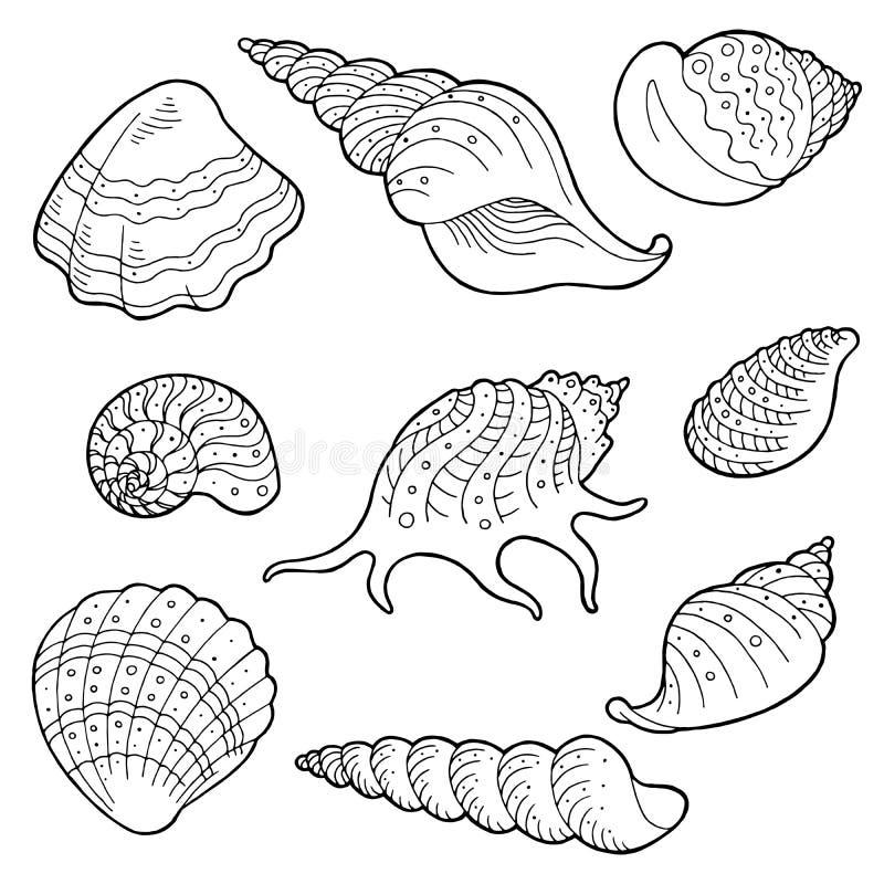 Illustration blanche noire graphique réglée de croquis de Shell illustration libre de droits