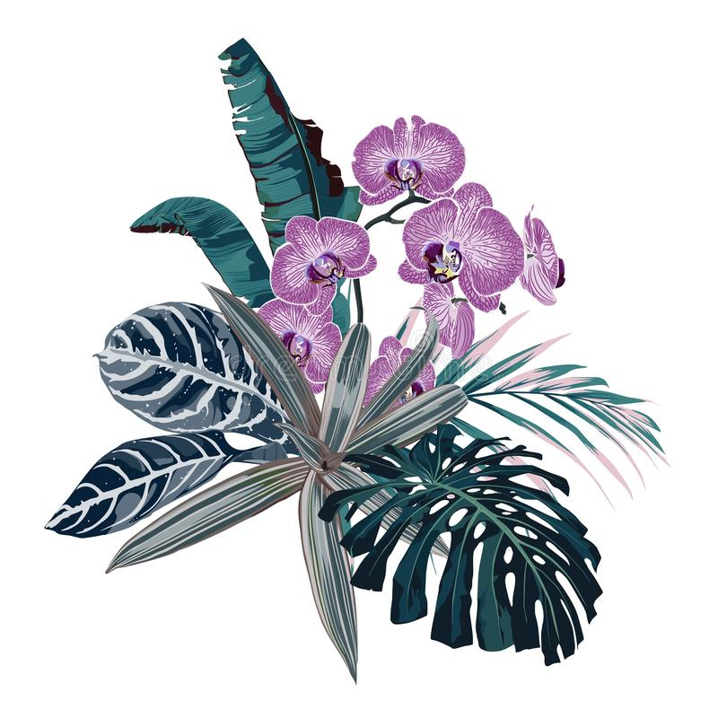 Illustration botanique, beau bouquet tropical de fleurs, fleurs roses d'orchidée, palmettes, usines exotiques illustration libre de droits