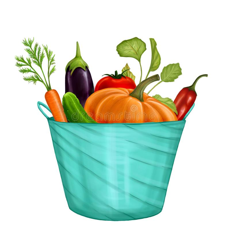Illustration with a bowl and vegetables royalty free illustration