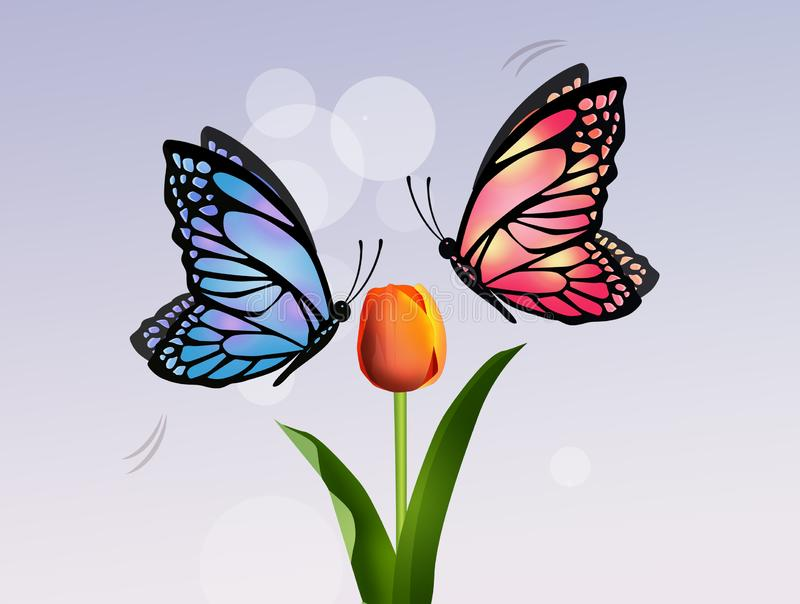 Butterflies on tulip flower. Illustration of butterflies on tulip flower vector illustration